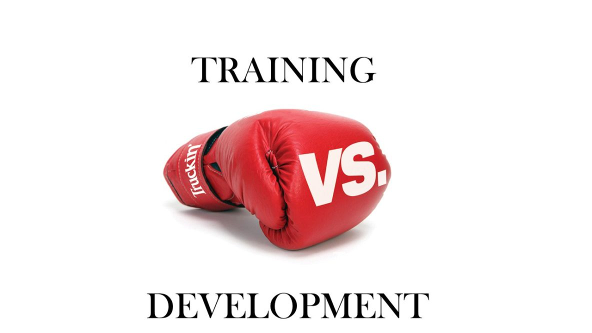 training vs development